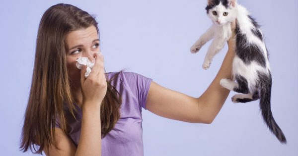 a woman allergic to cats putting a cat away from her